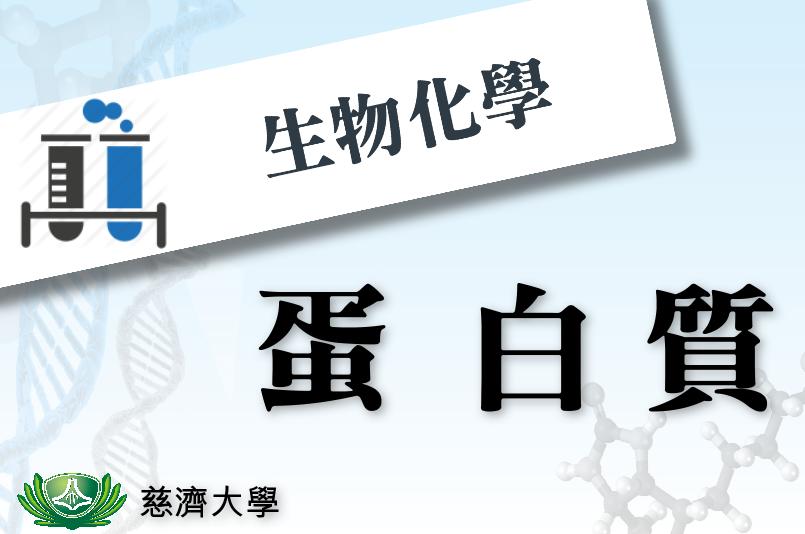 生物化學I-蛋白質小劇場(2018夏季班)