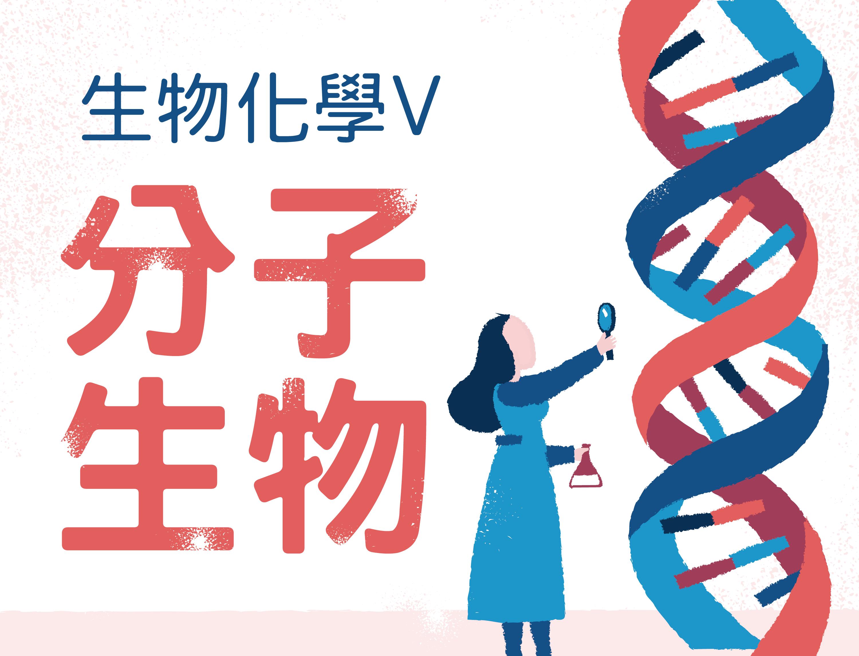 生物化學V-分子生物學(I)